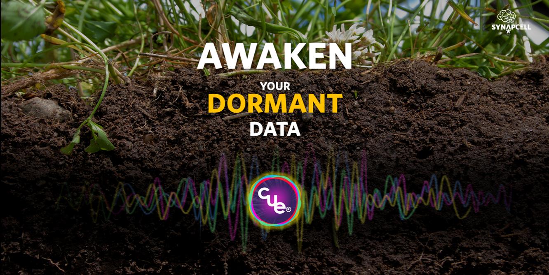 SynapCell-Awaken-Dormant-Data