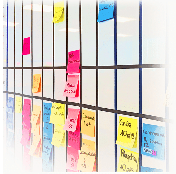 Agile-management-SynapCell