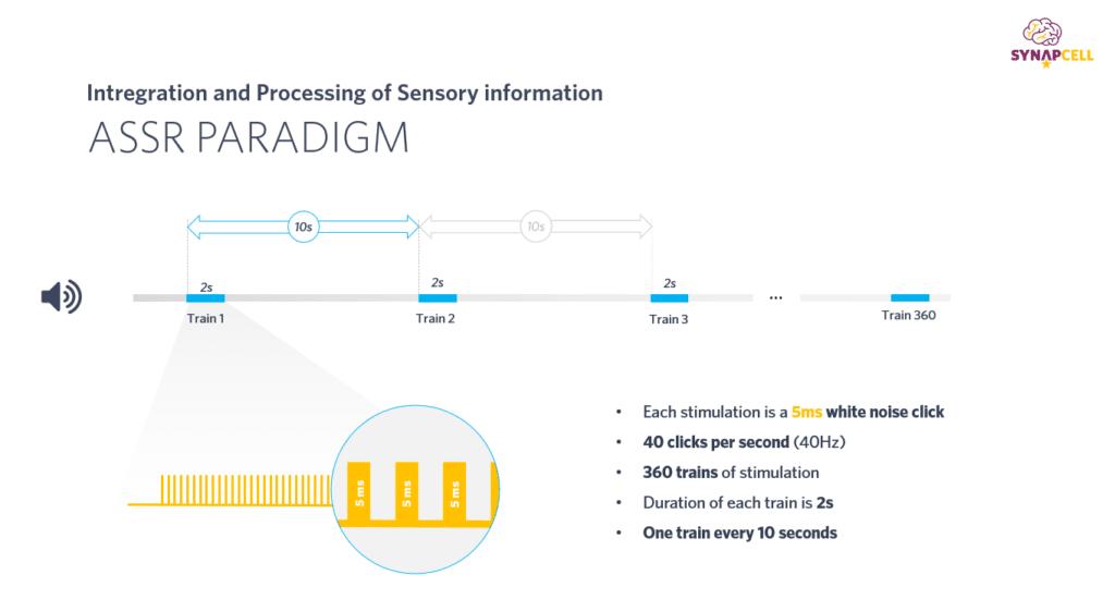 ASSR-Paradigm-SynapCell