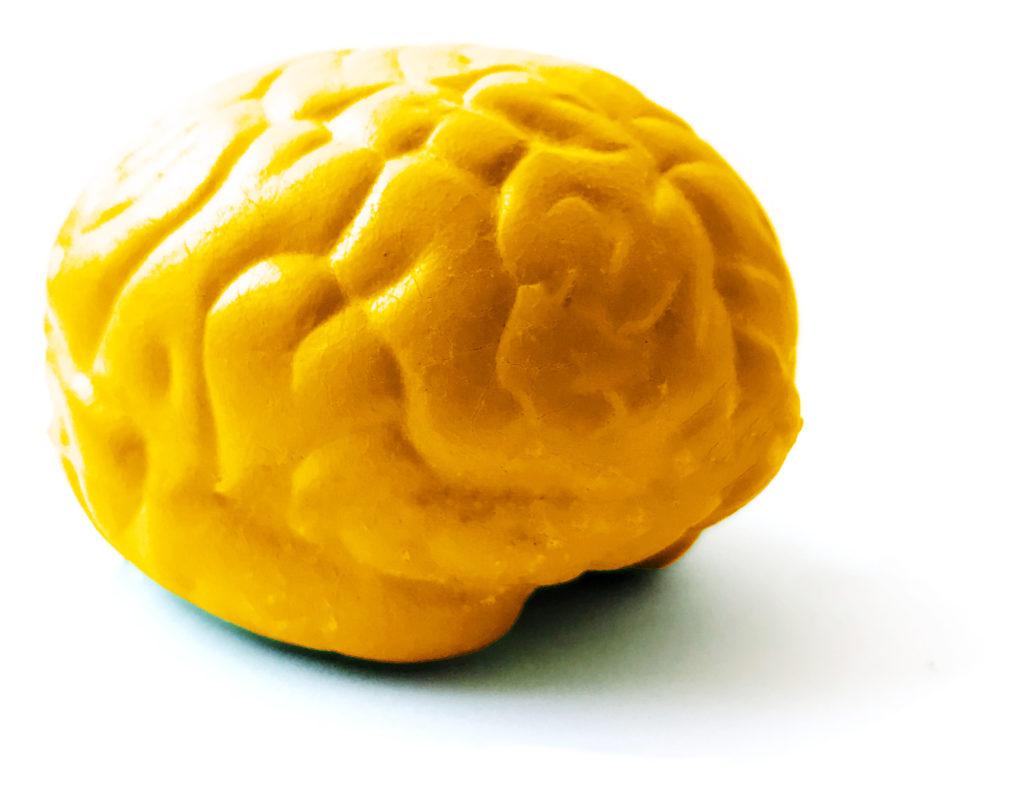 brain-synapcell