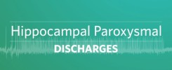 Hippocampal_paroxysmal_discharges-synapcell